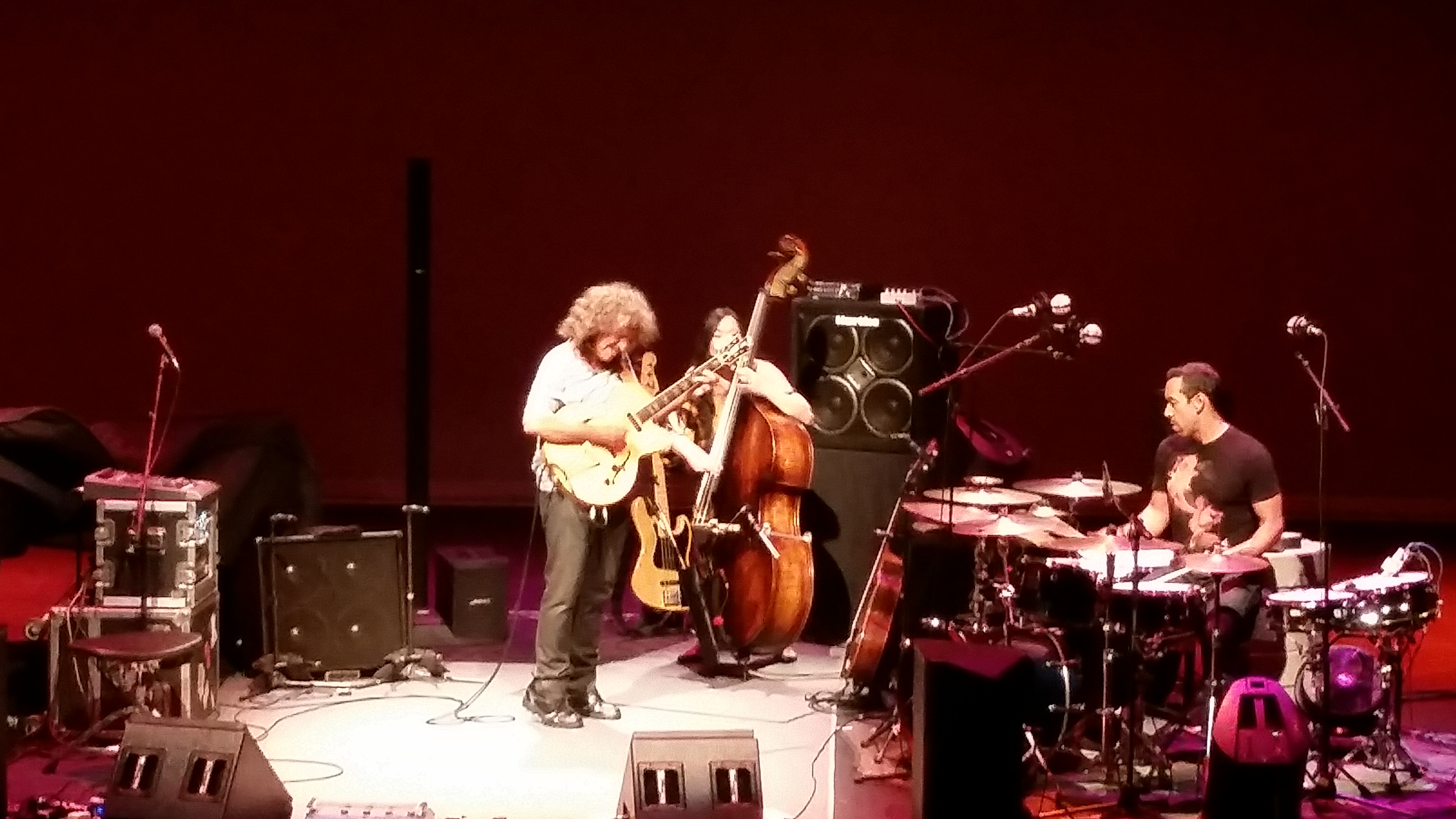 PatMetheny2016-09-16VirginiaPiperTheaterScottsdaleAZ (11).jpg