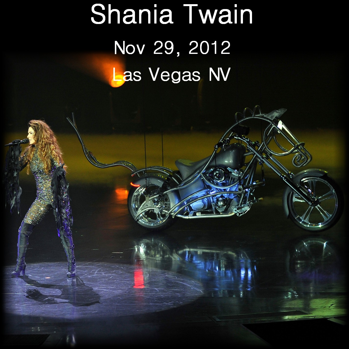 ShaniaTwain2012-11-29TheColosseumLasVegasNV.jpg