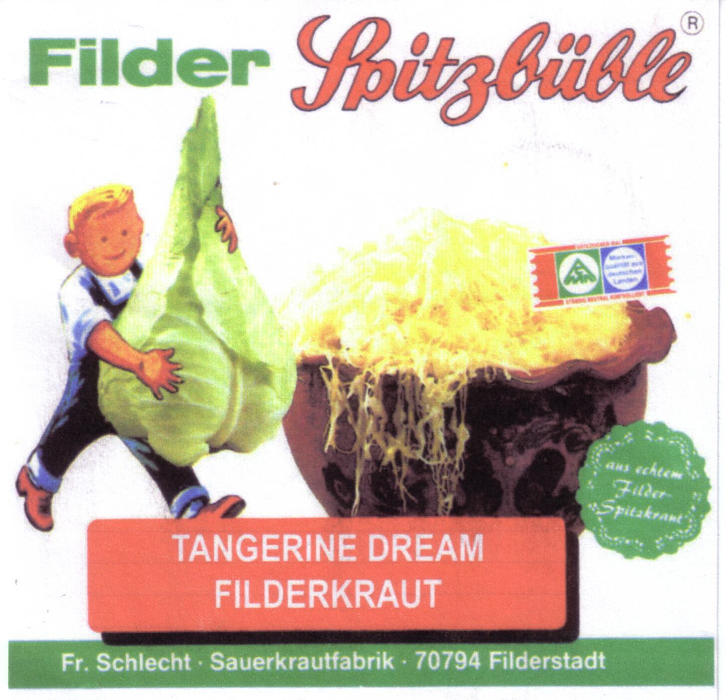 TangerineDream1997-04-10FilderkrautFilderstadtGermany.jpg